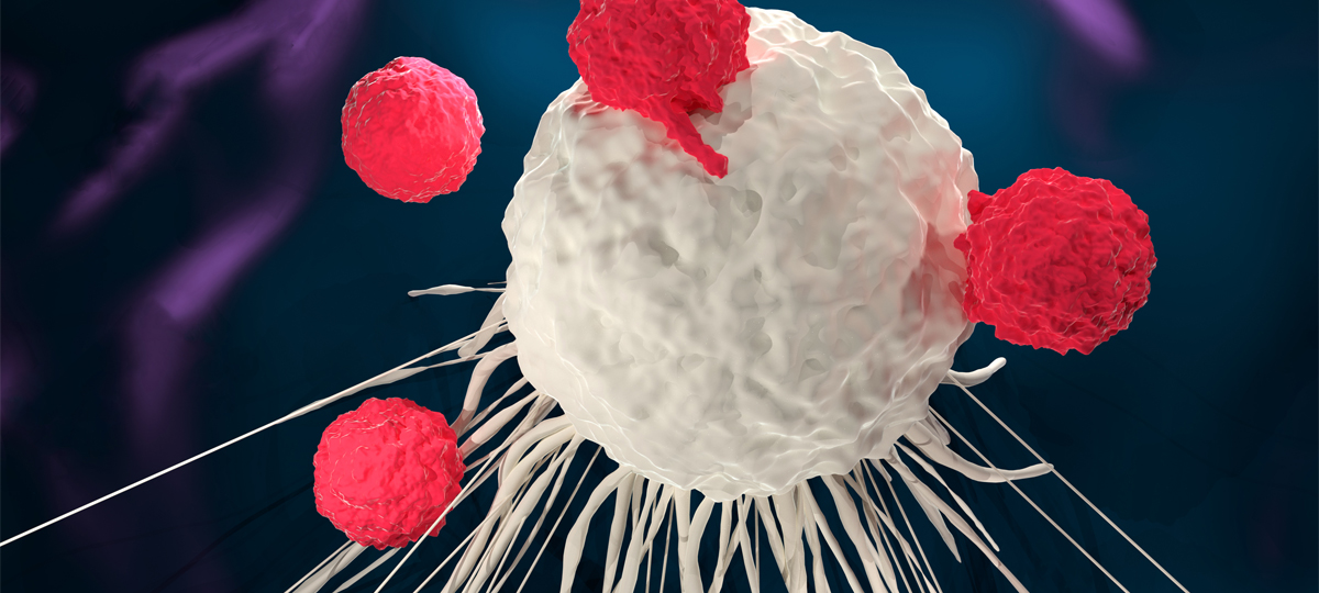 Advances in Immunotherapy Mean More Options for Cancer Patients